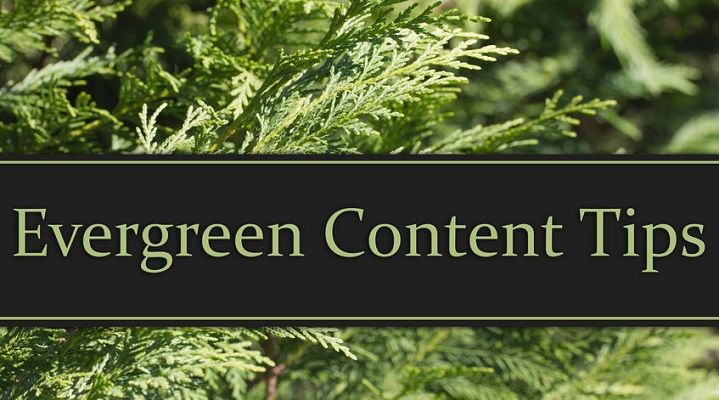 Evergreen Content – The key to a solid SEO base